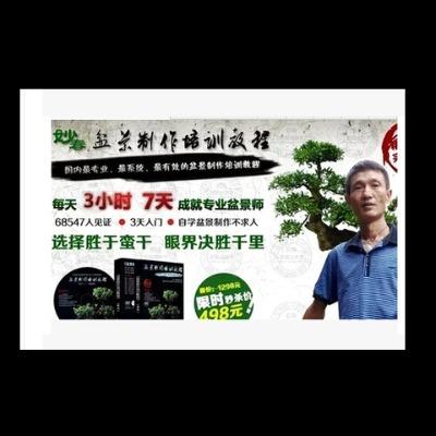 盆景制作培训教程宝典 盆景种植栽培技术大全视频教程16GU盘2书籍 包邮