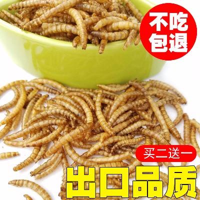 仓鼠粮食面包虫干黄粉虫干小巴西龟乌龟饲料粮龙鱼罗汉鱼食粮饲料